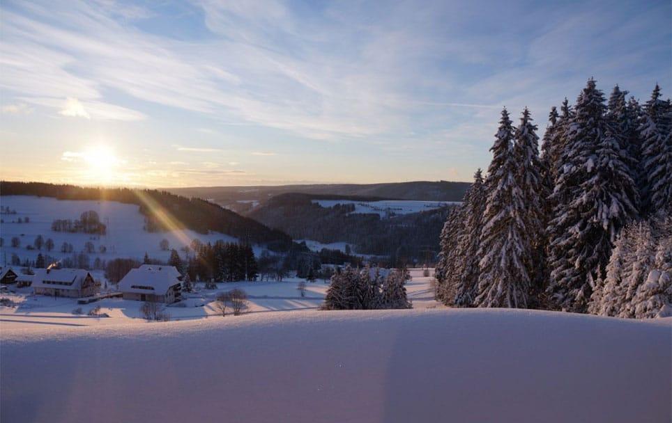 Teamworkshop im Schwarzwald Blogbeitrag