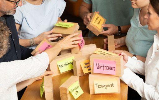 Systemische Organisations- und Strukturaufgabenstellung